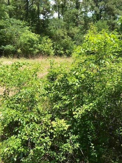 1 PERRY DR, COLDSPRING, TX 77331 - Photo 2