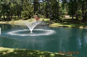 12919 ANDROMEDA CT, Willis, TX 77318 - Photo 2