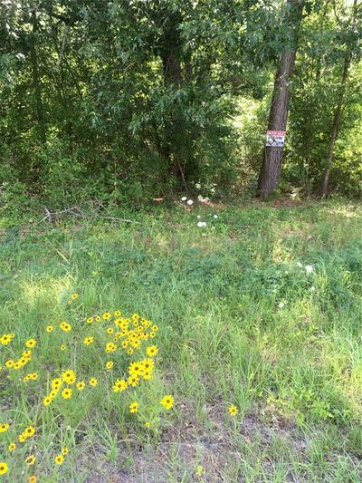 0 HWY 59, Corrigan, TX 75939 - Photo 1