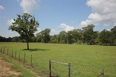 0 SPARKS, Boling, TX 77420 - Photo 1