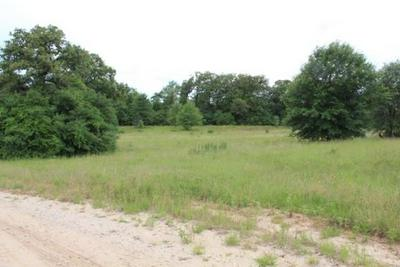 TBD COUNTY ROAD 336, Jewett, TX 75846 - Photo 1