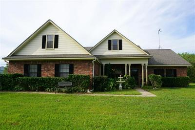 4444 COUNTY ROAD 203, Liverpool, TX 77577 - Photo 1