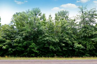 TBD HWY 63 E, Wiergate, TX 75977 - Photo 2