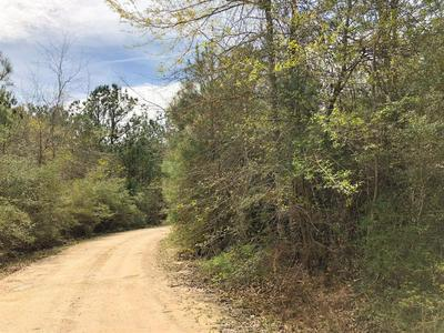 00 COUNTY RD 3132, Mauriceville, TX 77626 - Photo 1