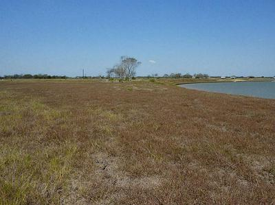 41 WINDSWEPT DR, Port Lavaca, TX 77979 - Photo 1