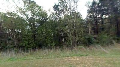 LOT 102-104 VALLEY DRIVE, Coldspring, TX 77331 - Photo 2