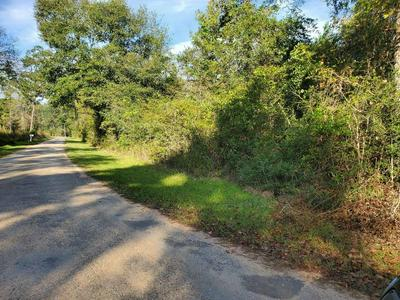 1104 RAILROAD ROAD AVE AVENUE, Shepherd, TX 77371 - Photo 2