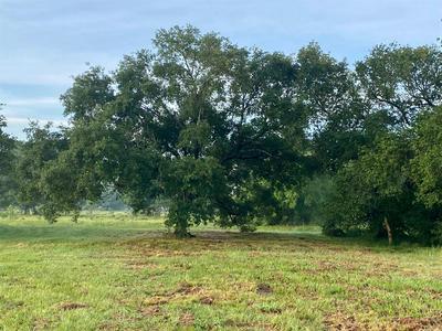 0 CLIFFORD ST, Alvin, TX 77511 - Photo 2