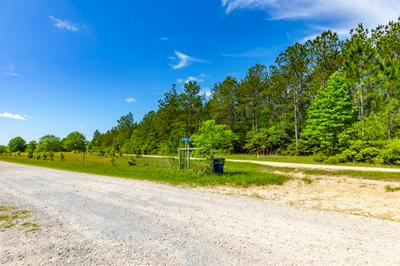 TRACT 1 WHISPERING PINES DRIVE, Lumberton, TX 77657 - Photo 2