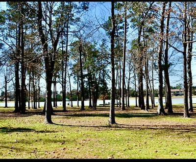 5611 WHITE BIRCH RUN, Spring, TX 77386 - Photo 1
