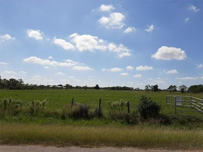 TBD TRENCKMANN ROAD, Sealy, TX 77474 - Photo 2