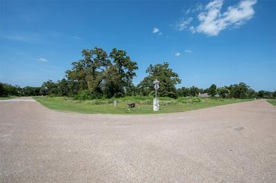 10838 CHAMBERLAIN DR, Iola, TX 77861 - Photo 2