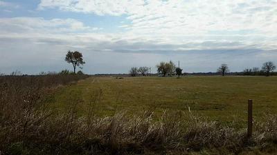 0000 POWELL POINT SCHOOL RD ROAD, BEASLEY, TX 77417 - Photo 1