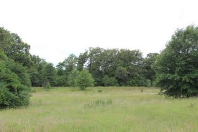 TBD COUNTY ROAD 336, Jewett, TX 75846 - Photo 2
