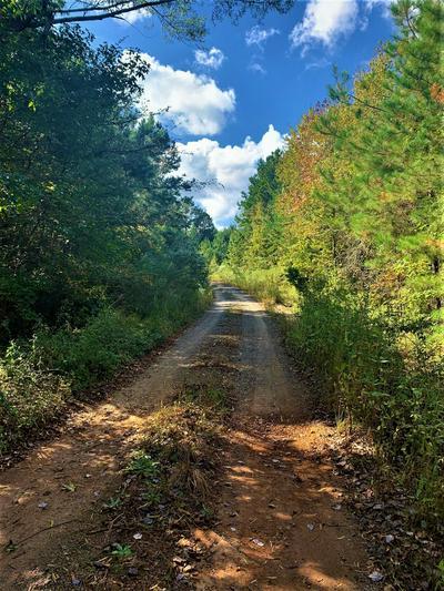 TBD FM 449, Hallsville, TX 75650 - Photo 1