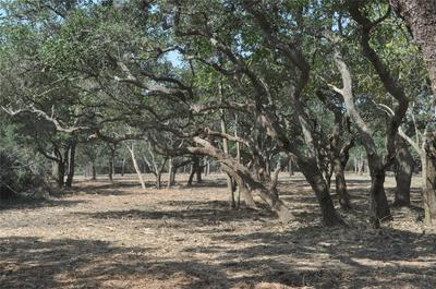 TBD FARM TO MARKET 1447, Yoakum, TX 77995 - Photo 1