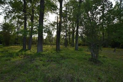 LOT 10 SHADY LANE, CROSBY, TX 77532 - Photo 1