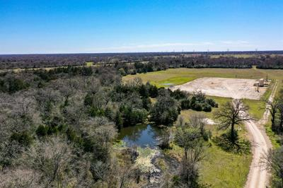 74 ACRES HIGHWAY 21 WEST, Madisonville, TX 77864 - Photo 2