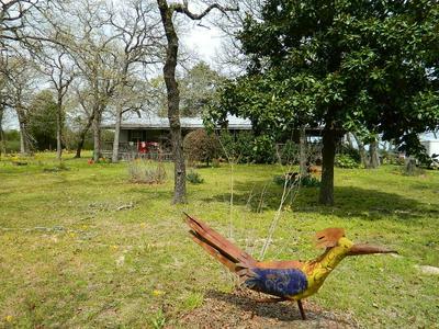 10042 PR 4120, Marquez, TX 77865 - Photo 1