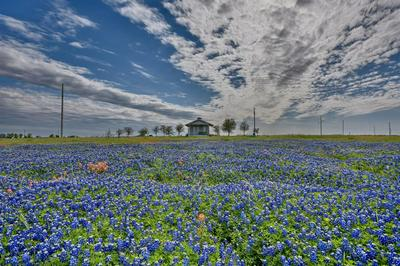 6522 PRIHODA RD, Fayetteville, TX 78940 - Photo 1