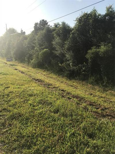 0000 COMEAUX LANE, Winnie, TX 77665 - Photo 2