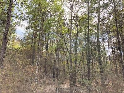 00 COUNTY RD 3132, Mauriceville, TX 77626 - Photo 2