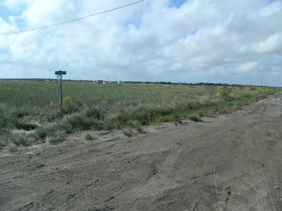 690 W PEREGRINE, Sargent, TX 77414 - Photo 1