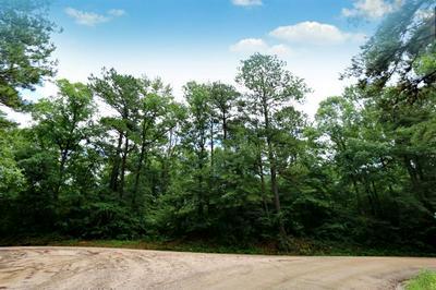 TBD COUNTY RD 1052, Wiergate, TX 75977 - Photo 1