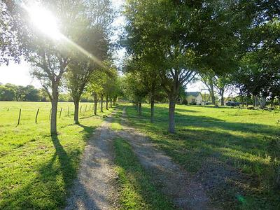 25417 HIGHWAY 6 # A, Hempstead, TX 77445 - Photo 2