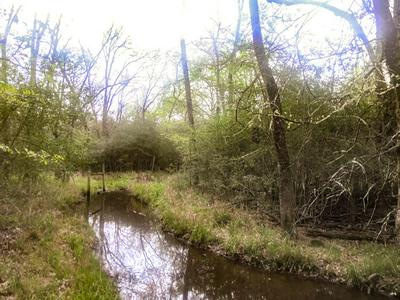 TBD WOOD LANE, Madisonville, TX 77864 - Photo 2