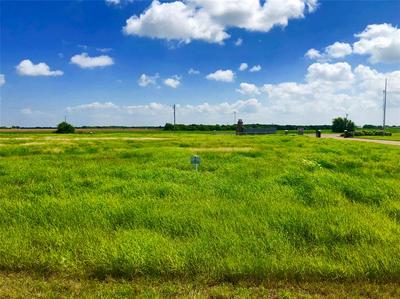 54 REDFISH DR, Port Lavaca, TX 77979 - Photo 2