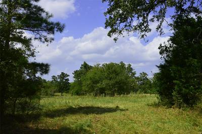 0030 HIGHWAY 90 N HIGHWAY, Bedias, TX 77831 - Photo 2