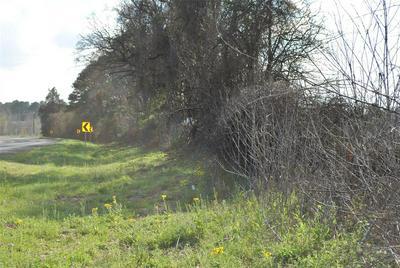 TBD S HWY 287/19, Grapeland, TX 75844 - Photo 1