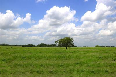 LOT 16/B REAGANS WAY, NAVASOTA, TX 77868 - Photo 2