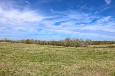 LOT 13 REAGANS WAY, NAVASOTA, TX 77868 - Photo 1