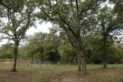 1723 LANDERS LN, Bedias, TX 77831 - Photo 1