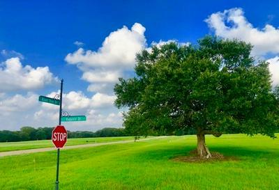223 RIVER TREE DR, Palacios, TX 77465 - Photo 2