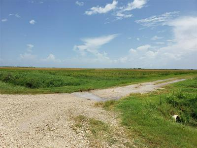 0 JENKINS ROAD, Hankamer, TX 77560 - Photo 2