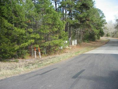 00 S STATE HWY 19, Elkhart, TX 75839 - Photo 2