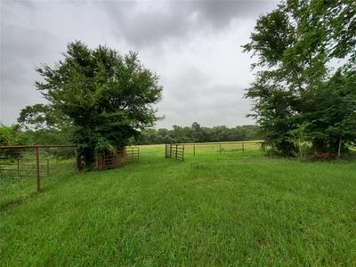 39581 HEISE RD, Hempstead, TX 77445 - Photo 2