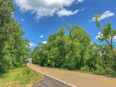 000 FM 1745, Chester, TX 75936 - Photo 1