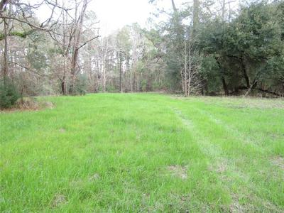 1106 COUNTY RD 2375 PUMP ST ROAD, Chester, TX 75936 - Photo 1