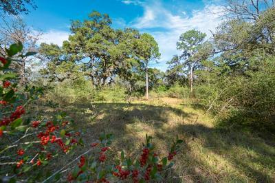 TBD BASS ROAD, Garwood, TX 77442 - Photo 1