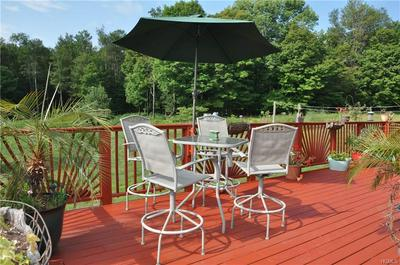 121 CASTLE HILL RD, Liberty Town, NY 12768 - Photo 2