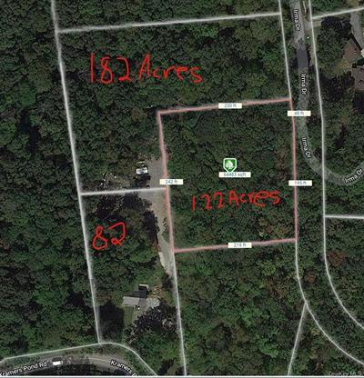 LOT 18 & 19 IRMA DRIVE, Putnam Valley, NY 10579 - Photo 1