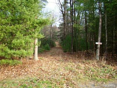 ROUTE 42, Forestburgh, NY 12777 - Photo 1