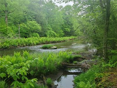 *** CREAMERY ROAD TR 20, Mongaup Valley, NY 12762 - Photo 1