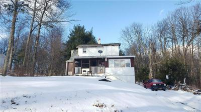 64 HILLSIDE AVE, Monticello, NY 12701 - Photo 2