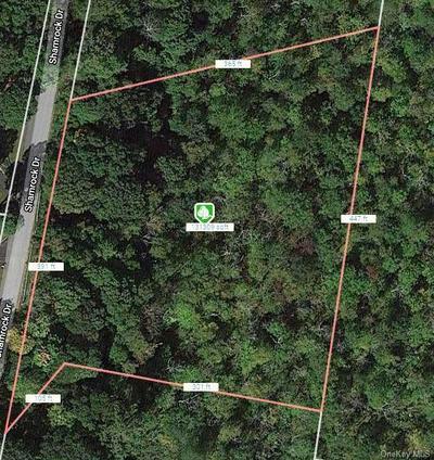 11 SHAMROCK DR, Putnam Valley, NY 10579 - Photo 1