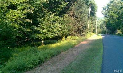 FOREST ROAD, Neversink, NY 12740 - Photo 1